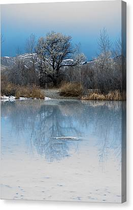 Winter Taking Hold Canvas Print by Fran Riley
