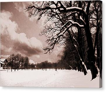 Winter Tale Canvas Print by Nina Ficur Feenan