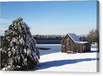 Canvas Print featuring the photograph Winter Time by Gina Cormier