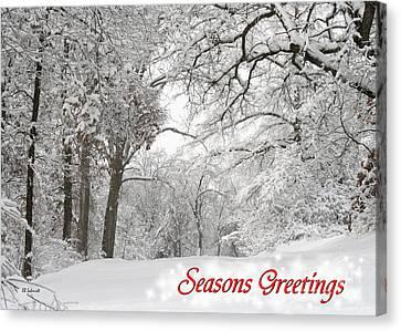 Winter Trail Seasonal Card Canvas Print by E B Schmidt