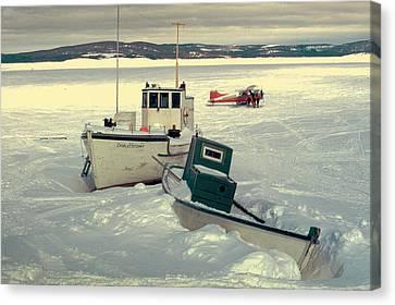 Winter Travel Labrador Canvas Print by Douglas Pike
