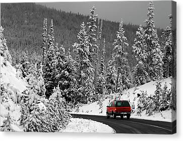 Canvas Print featuring the photograph Winter Traveler by Geraldine Alexander