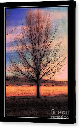 Winter Tree Canvas Print by Kathleen Struckle