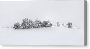 Julie Dant Artography Canvas Print - Winter Tree Line In Indiana by Julie Dant