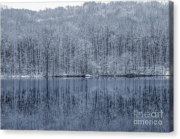 Winter Trees And Lake In Blue Canvas Print