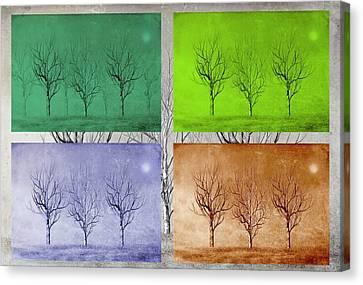 Forest Floor Canvas Print - Winter Trees  by David Dehner