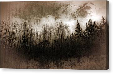 Winter Trees Canvas Print by Dianne Phelps