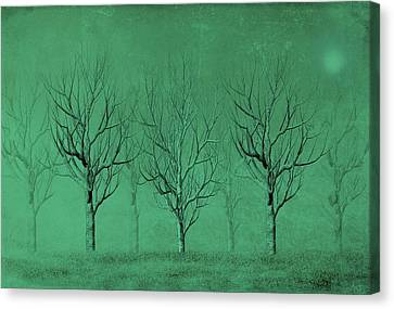 Canvas Print featuring the digital art Winter Trees In The Mist by David Dehner