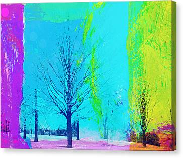 Winter Trees Canvas Print by Susan Stone