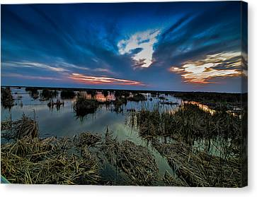 Winter Twilight At Anahuac Wildlife Refuge  Canvas Print by Allen Biedrzycki