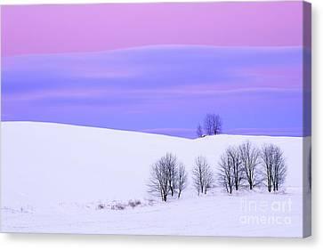Winter Twilight Landscape Canvas Print