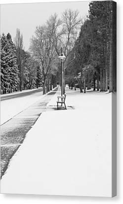 Winter Walk Canvas Print by Fran Riley