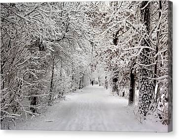 Canvas Print featuring the photograph Winter Walk In Fairytale  by Annie Snel