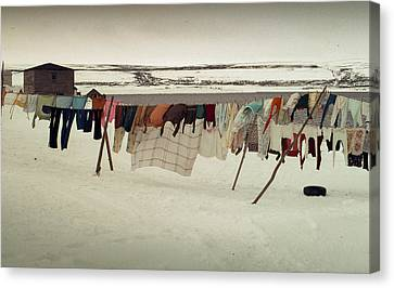 Winter Wash Day Labrador Canvas Print