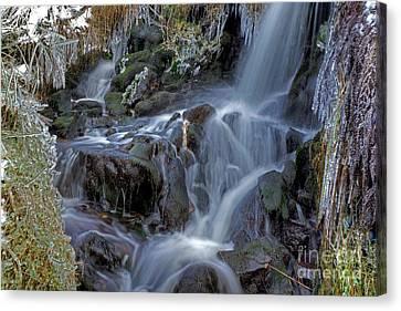 Winter Waterfall In Goyt Valley Canvas Print by David Birchall