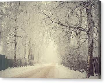 Winter Way Canvas Print by Jenny Rainbow