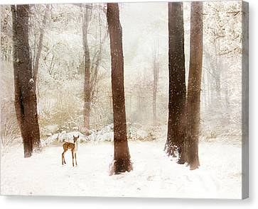Winter Whimsy Canvas Print by Jessica Jenney