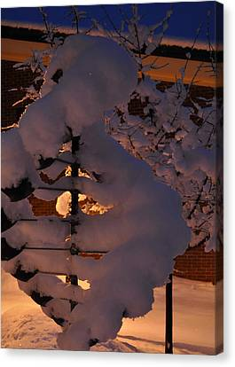 Winter Whirligig Canvas Print by Jim Brage