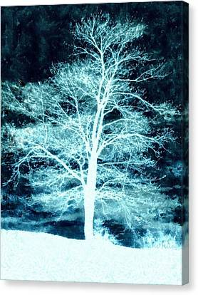 Winter Whispers Through The Night Canvas Print by Janine Riley