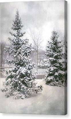Winter White 2 Canvas Print by Julie Palencia
