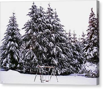 Winter White Canvas Print by Steve Battle