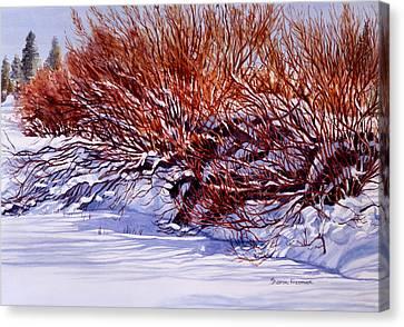 Sunriver Canvas Print - Winter Willows by Sharon Freeman