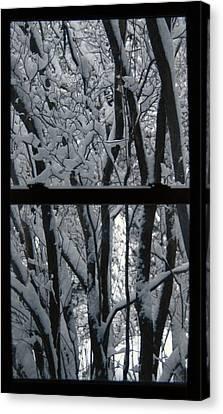 Winter Window Canvas Print