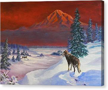 Winter Wolf  Canvas Print by Gracia  Molloy