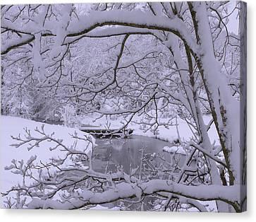 Snow Flake Canvas Print - Winter Wonderland 2 by Mike McGlothlen