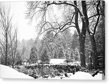 Canvas Print - Winter Wonderland by Allan Millora Photography