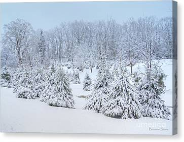Winter Wonderland In West Virginia Canvas Print by Benanne Stiens
