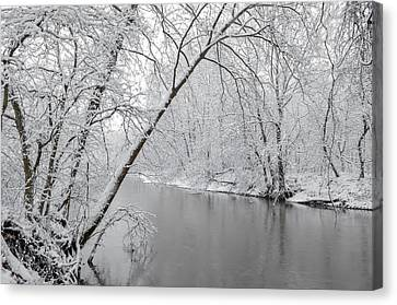 Winter Wonderland Canvas Print by Brian Stevens