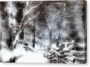 Winter Wonderland Canvas Print by Elaine Manley