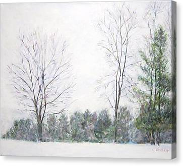 Winter Wonderland Usa Canvas Print