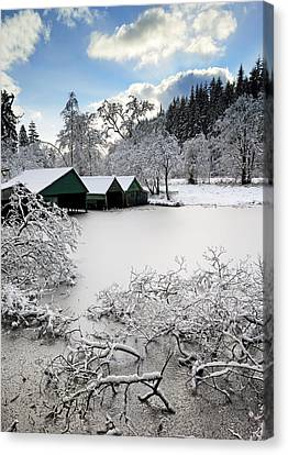 Winter Wonderland Canvas Print by Grant Glendinning