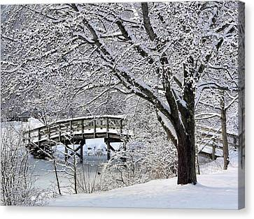 Canvas Print featuring the photograph Winter Wonderland by Janice Drew