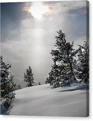 Winter Wonderland Canvas Print by Leland D Howard