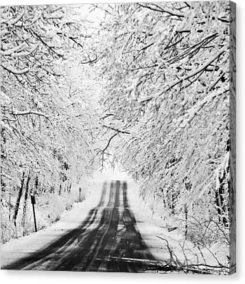 Canvas Print featuring the photograph Winter Wonderland by Ricky L Jones