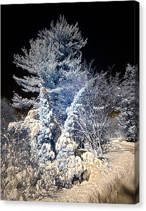 Canvas Print featuring the photograph Winter Wonderland by Steve Zimic