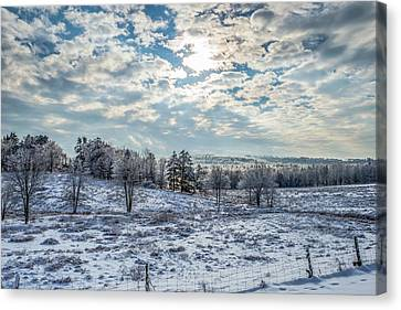 Winter Wonderland Canvas Print by Tim Sullivan