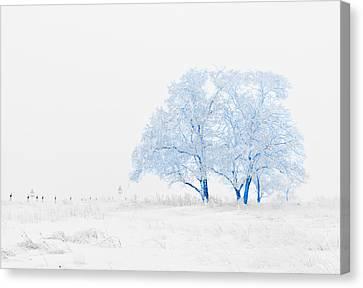 Winter Wonderland Canvas Print by Vel Verrept