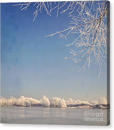 Winter Wonderland With Snowflakes Decoration. Canvas Print by Lyn Randle