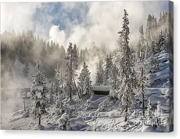 Winter Wonderland - Yellowstone National Park Canvas Print by Sandra Bronstein