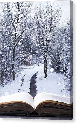 Winter Woodland Book Canvas Print by Amanda Elwell