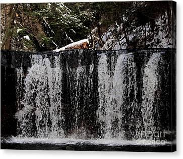 Winter Woodland Waterfall Canvas Print