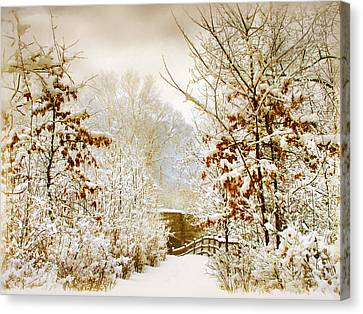 Winter Woods Canvas Print by Jessica Jenney