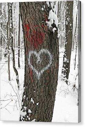 Winter Woods Romance Canvas Print by Ann Horn