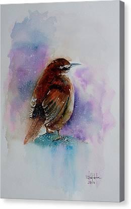 Winter Wren Canvas Print by Isabel Salvador