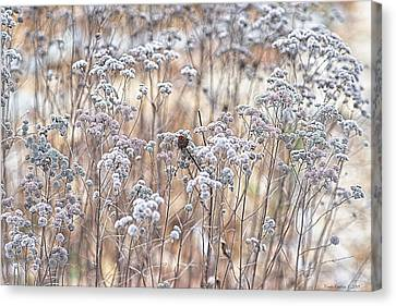 Canvas Print featuring the photograph Winter by Yvonne Emerson AKA RavenSoul