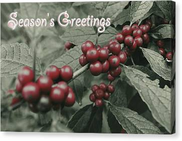 Canvas Print featuring the photograph Winterberry Greetings by Photographic Arts And Design Studio